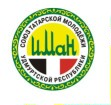 Республиканская молодежная общественная организация «Союз татарской молодежи Удмуртской Республики «Иман» («Вера»)
